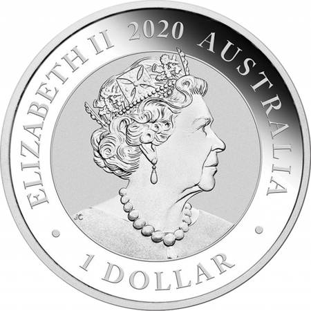 Srebrna Moneta Łabędź 1 uncja 24h