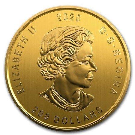 Zew Natury Ryś Rudy Złota Moneta 1 uncja